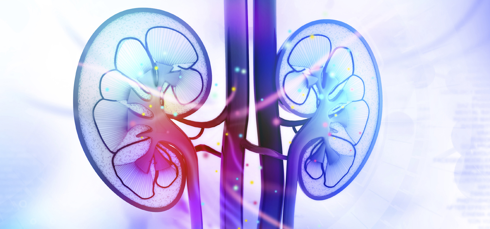 Aparato Genito-Urinario. Urología en la Clínica EMECE
